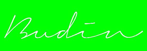 BUDIN